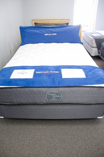 Designer Collection PLUSH (Mattress Only)